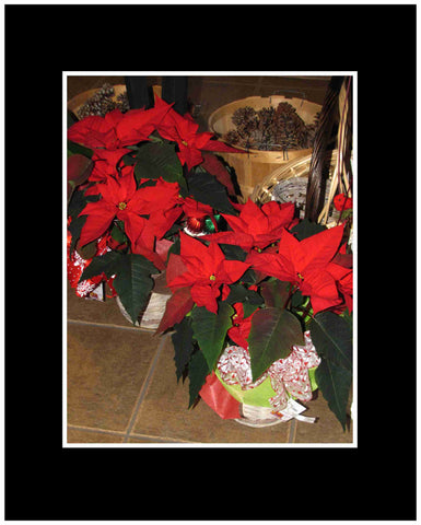Poinsettia Plant Decorated 6""