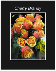 Cherry Brandy Long Stem Roses Wrapped Bouquet