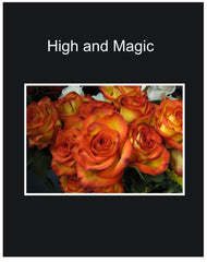 High and Magic Long Stem Roses Wrapped Bouquet