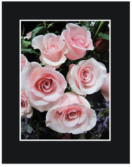 Pink Long Stem Roses Wrapped Bouquet