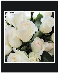 White Long Stem Roses Wrapped Bouquet