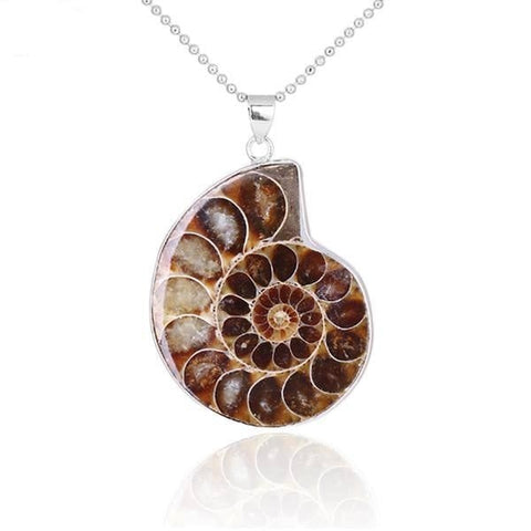 Ammonite Seashell Shell Pendant Necklace Natural Raw Fossil Fibonacci Spiral Sacred Geometry by Arcane Trail