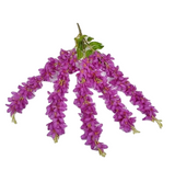 Hanging Wisteria Flowers - Purple (1 Piece) - Plants