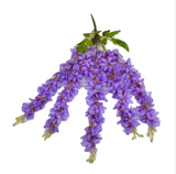 Hanging Wisteria Flowers - Violet (1 Piece) - Plants