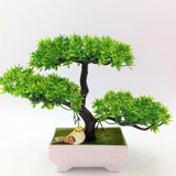 Solid Triple Bonsai - Plants