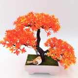 Solid Triple Bonsai - Orange - Plants