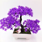 Solid Triple Bonsai - Purple - Plants