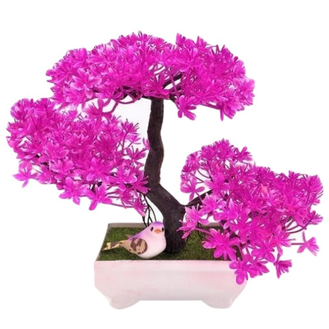 Solid Triple Bonsai - Violet - Plants