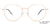Vincent Chase Rose Gold Eyeglasses 145539