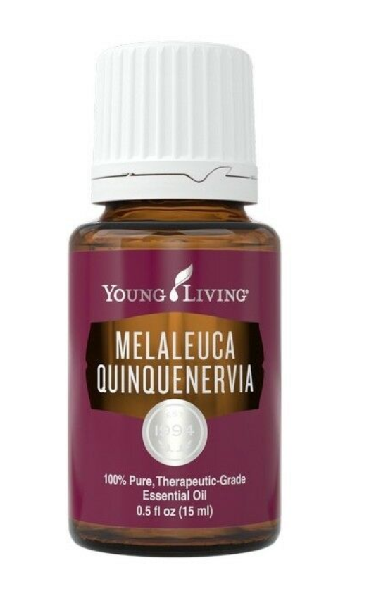 Melaleuca Quinquenervia Essential Oil - 15ml
