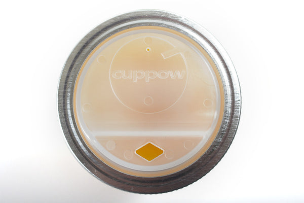 cuppow drinking lid mason jar sipping sippy canning jar travel mug