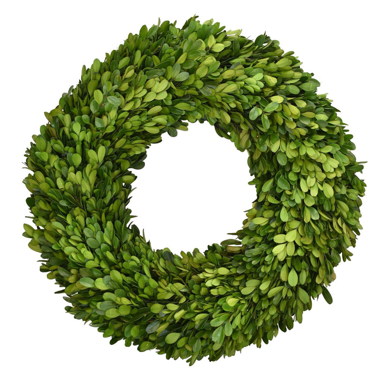Preserved Boxwood Wreath - 16""