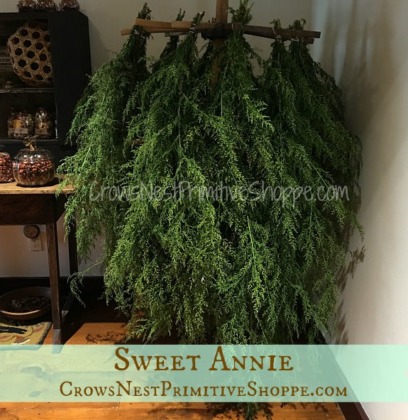 Sweet Annie Bunch-Air Dried