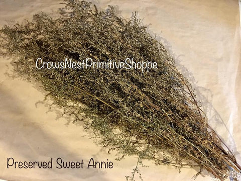 Sweet Annie Bunch-Preserved