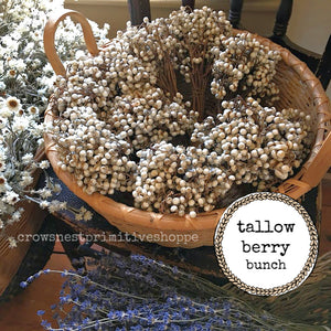 Tallow Berry Bunch