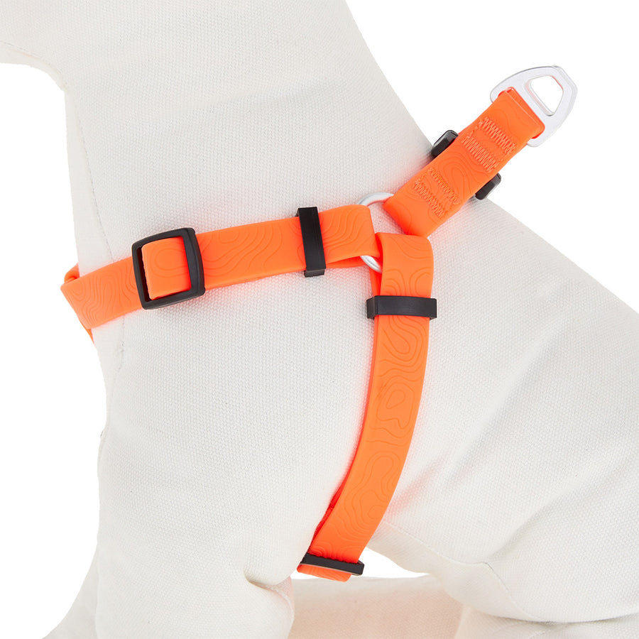 Arcadia Trail Waterproof Harness