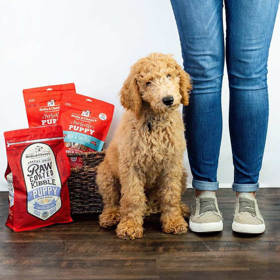 Stella & Chewy's Raw Coated Puppy Food