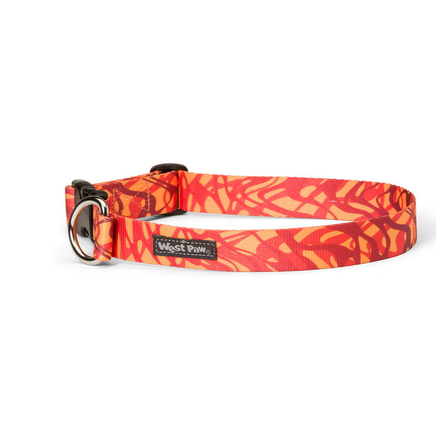 West Paw Outings Collars for Dogs