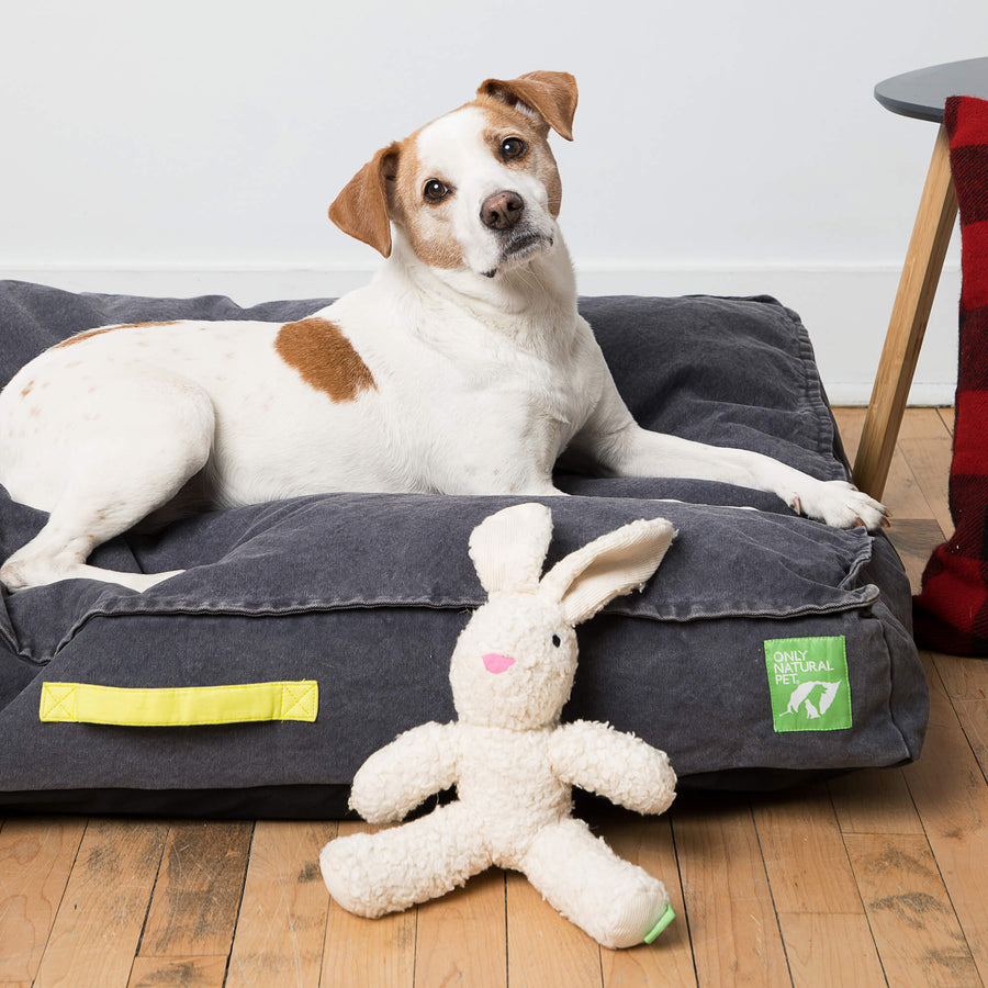 Only Natural Pet Eco-Friendly Organic Canvas Beds