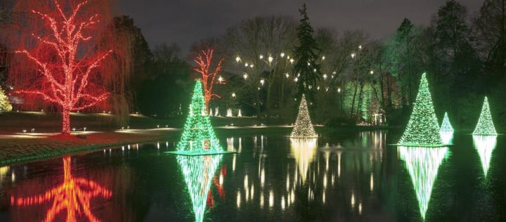 HOLIDAY SALE 15% OFF POND LIGHTS