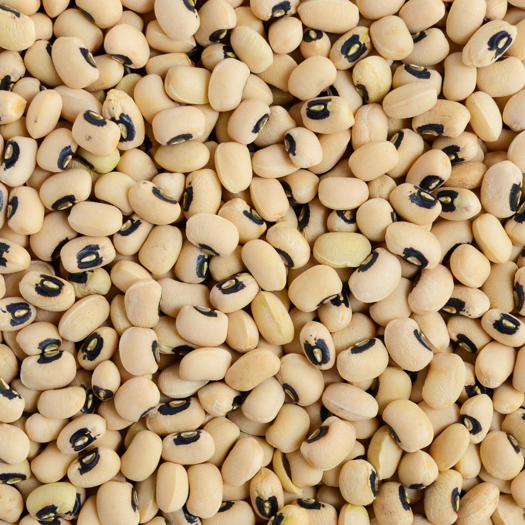 Organic Black-Eyed Peas Sprouting Beans