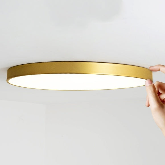 D30-D50cm Flush Mount Ring Lights Downlight Solid Brass PVC Acrylic Mini Style, LED Integrated