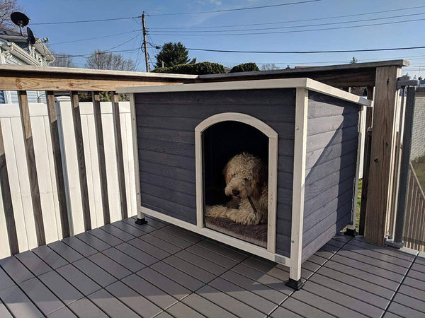 A4Pet Outdoor Dog House, Weather Protected, Raised, Easy to Clean, Small Medium Large Size Available