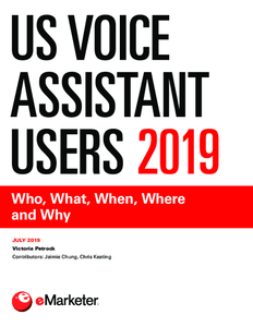 US Voice Assistant Users 2019: Who, What, When, Where and Why