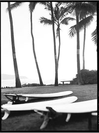 BOARDS, OAHU Photo 1