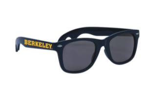 Berkeley Sunglasses
