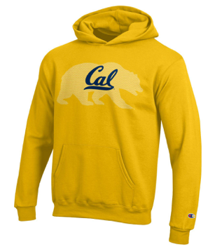 Champion Golden Bear Cal Youth Hoodie