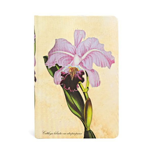 "BRAZILIAN ORCHID MINI JOURNAL by Paperblanks (3¾"" x 5½"" x ¾"")"