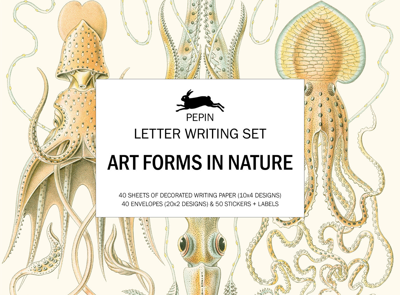 Art Forms in Nature Pepin Boxed Stationery