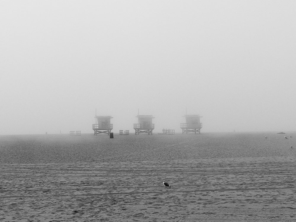 Fog at Venice Beach No. 1