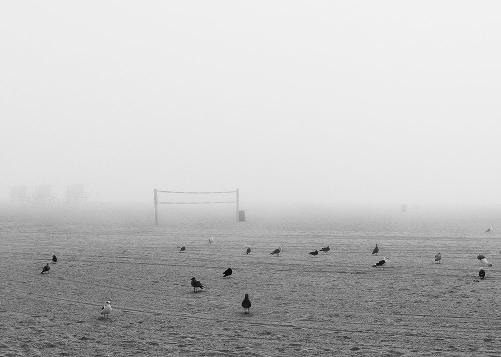 Fog at Venice Beach No. 2
