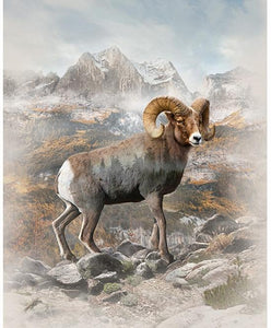 Call of the Wild - Big Horn Sheep Panel