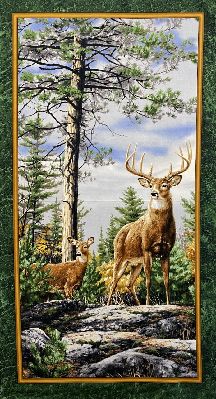 Deer Mountain Panel
