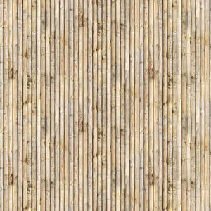 Rod and Reel, Beige Wood Planks