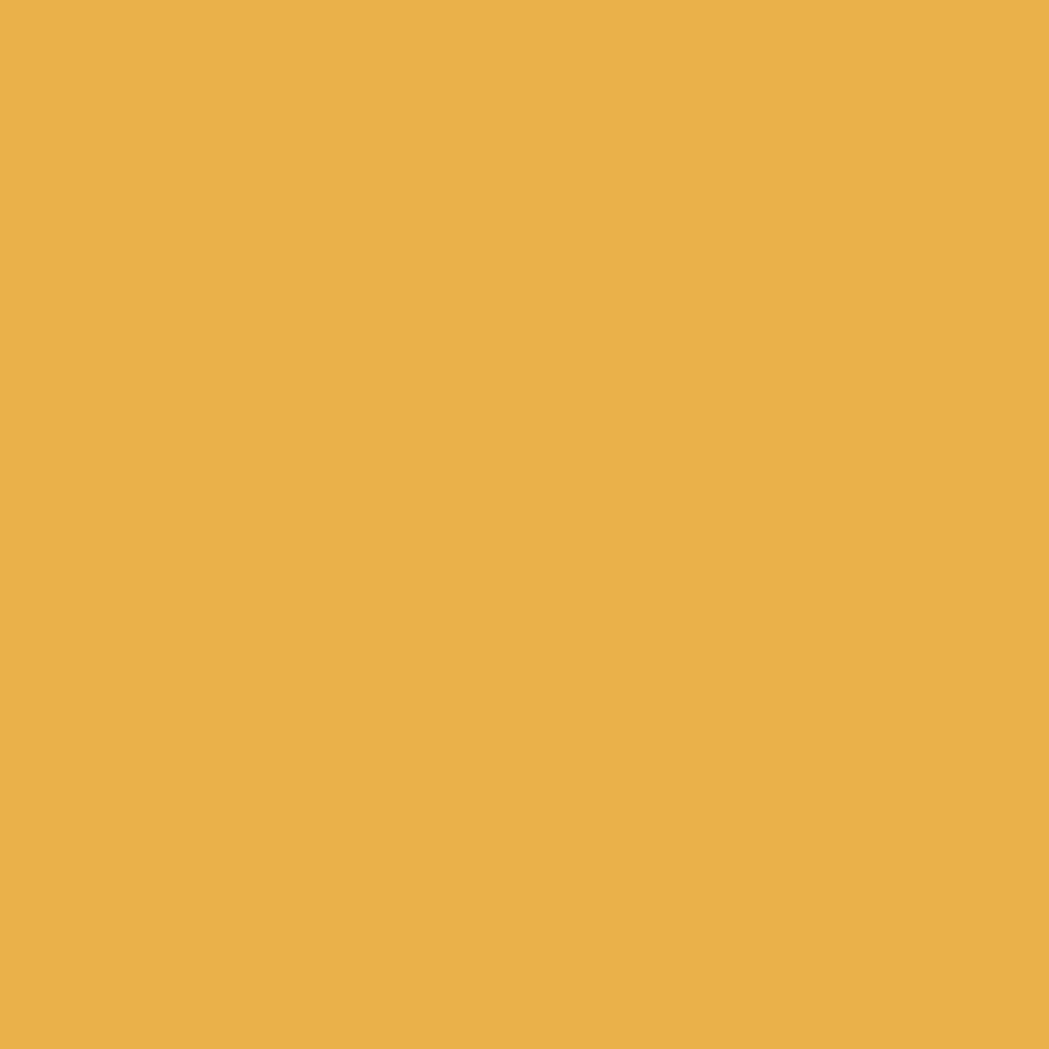 Painter's Palette - Goldenrod