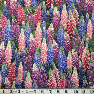 Nature - Pink and Blue Lupine