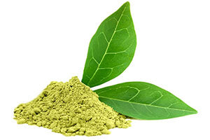 nutrition-forest-green-tea-extract