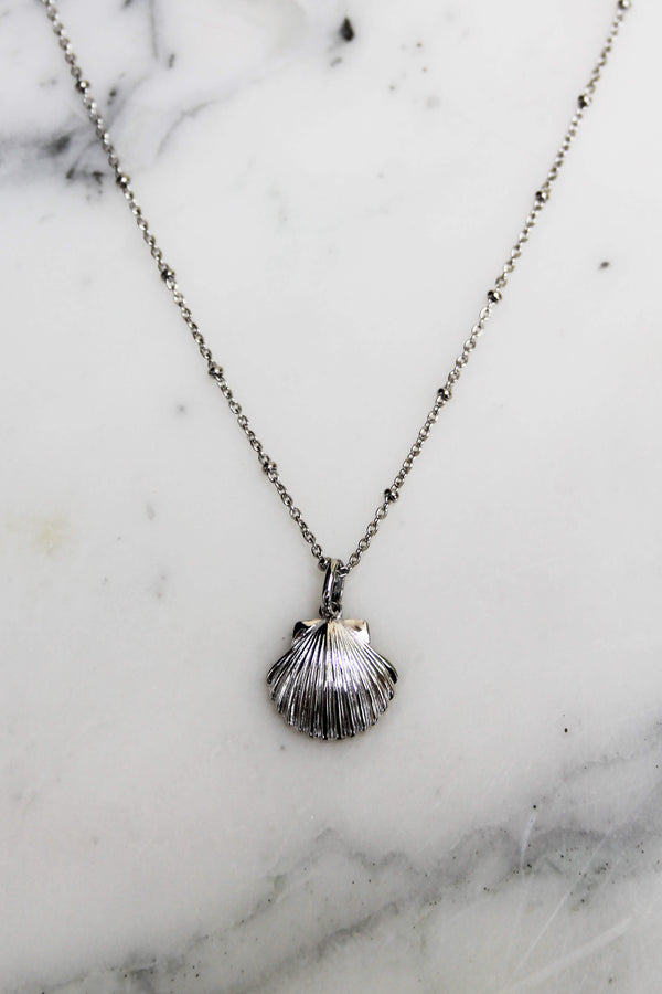 Absolème collier coquillage argent massif