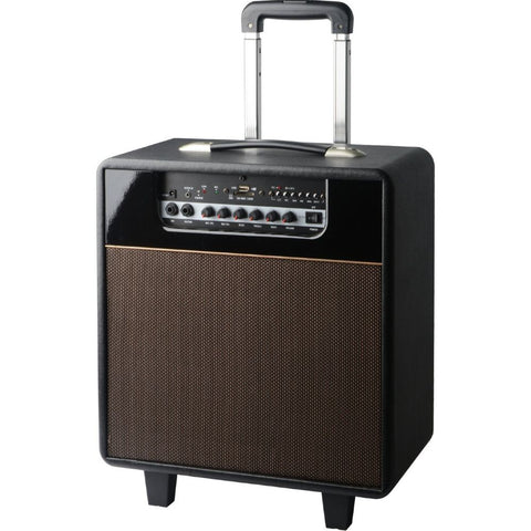 Rechargeable 3way8 BT MP3 PA Guitar Amp