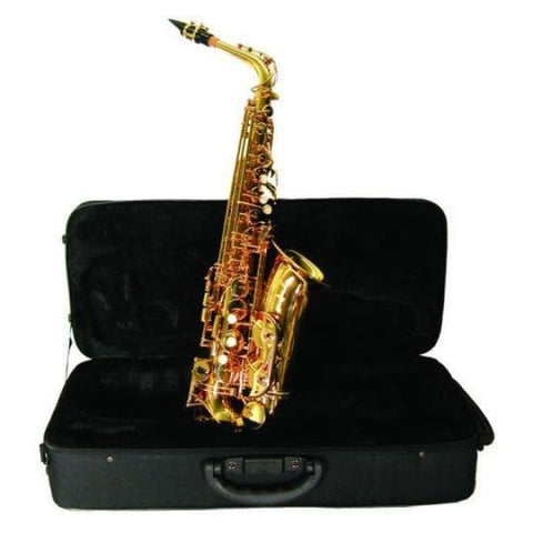 Alto Saxophone with Case - Band