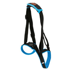 2019 New Adjustable Dog Lift Harness for Back Legs - Mia's Pet Supply