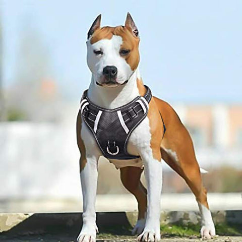 : Babyltrl Big Dog Harness No-Pull Adjustable - Mia's Pet Supply