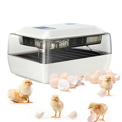 Magicfly Digital Fully Automatic Egg Incubator 24 Eggs Poultry Hatcher for Chickens Ducks - Mia's Pet Supply