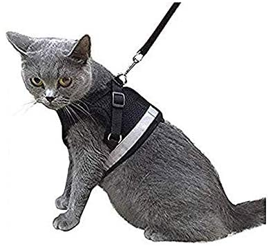 Kamots Beauty Escape Proof Dog Cat Harness and Leash - Mia's Pet Supply