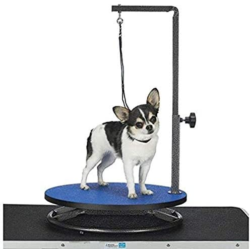 Master Equipment Small Pet Grooming Table, Blue - Mia's Pet Supply