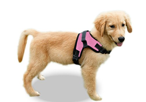 : Copatchy No Pull Reflective Adjustable Dog Harness - Mia's Pet Supply